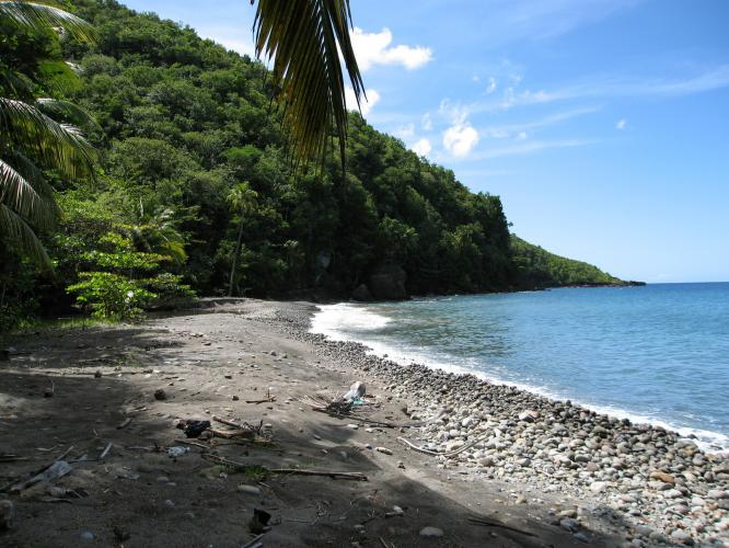 St Lucia Caribbean Sea: 243 Acres Of Caribbean Sea Beach Front Land For Sale In