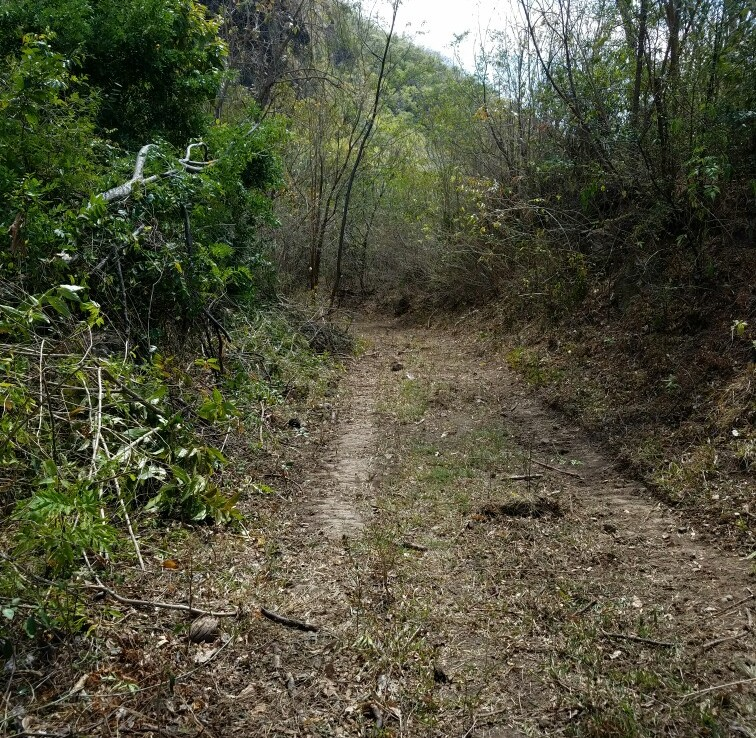 land for sale souffriere st kucia