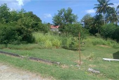 choiseul land for sale