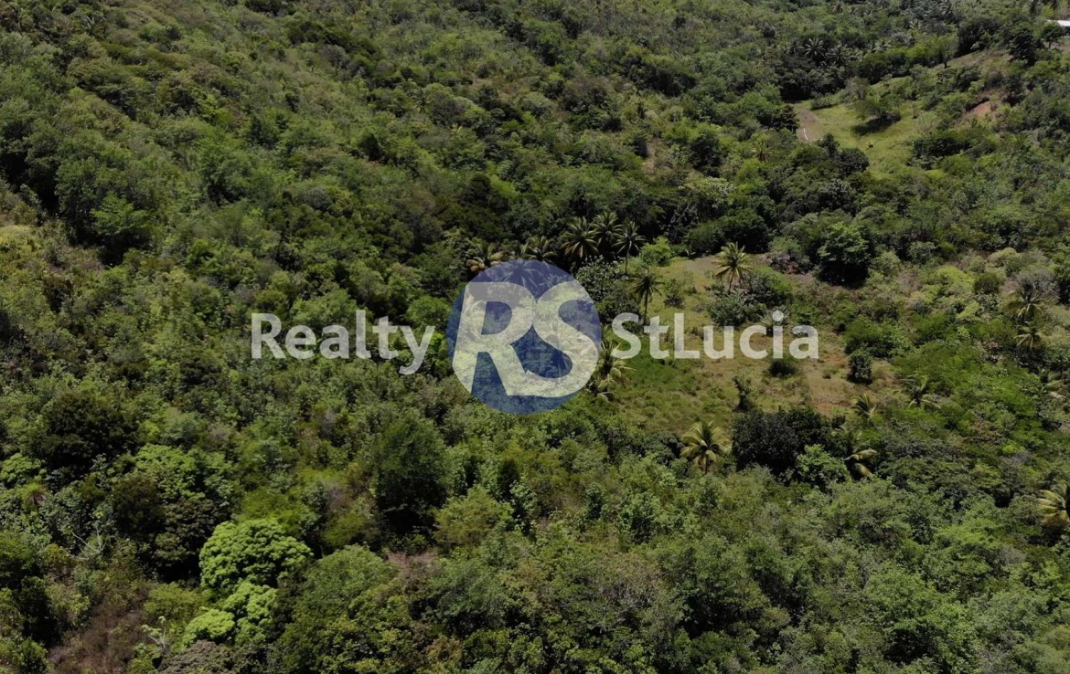 realty st lucia homes for sale st lucia
