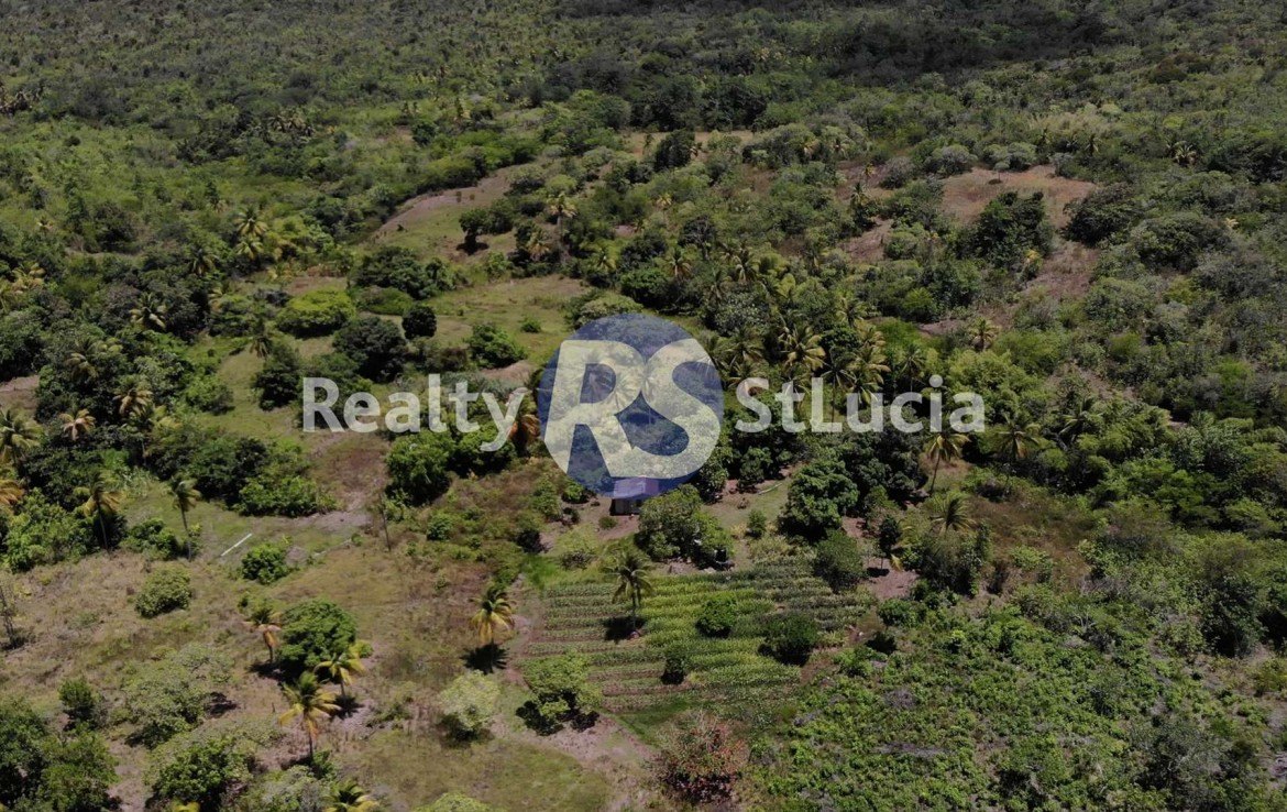 homes for sale st lucia land deals