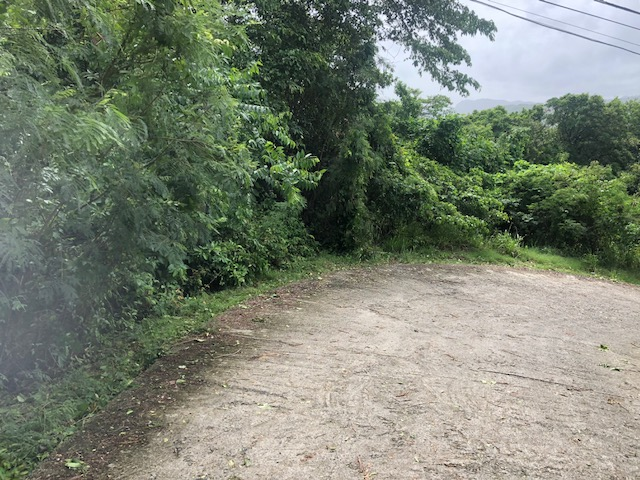 homes for sale st lucia marigot bay land