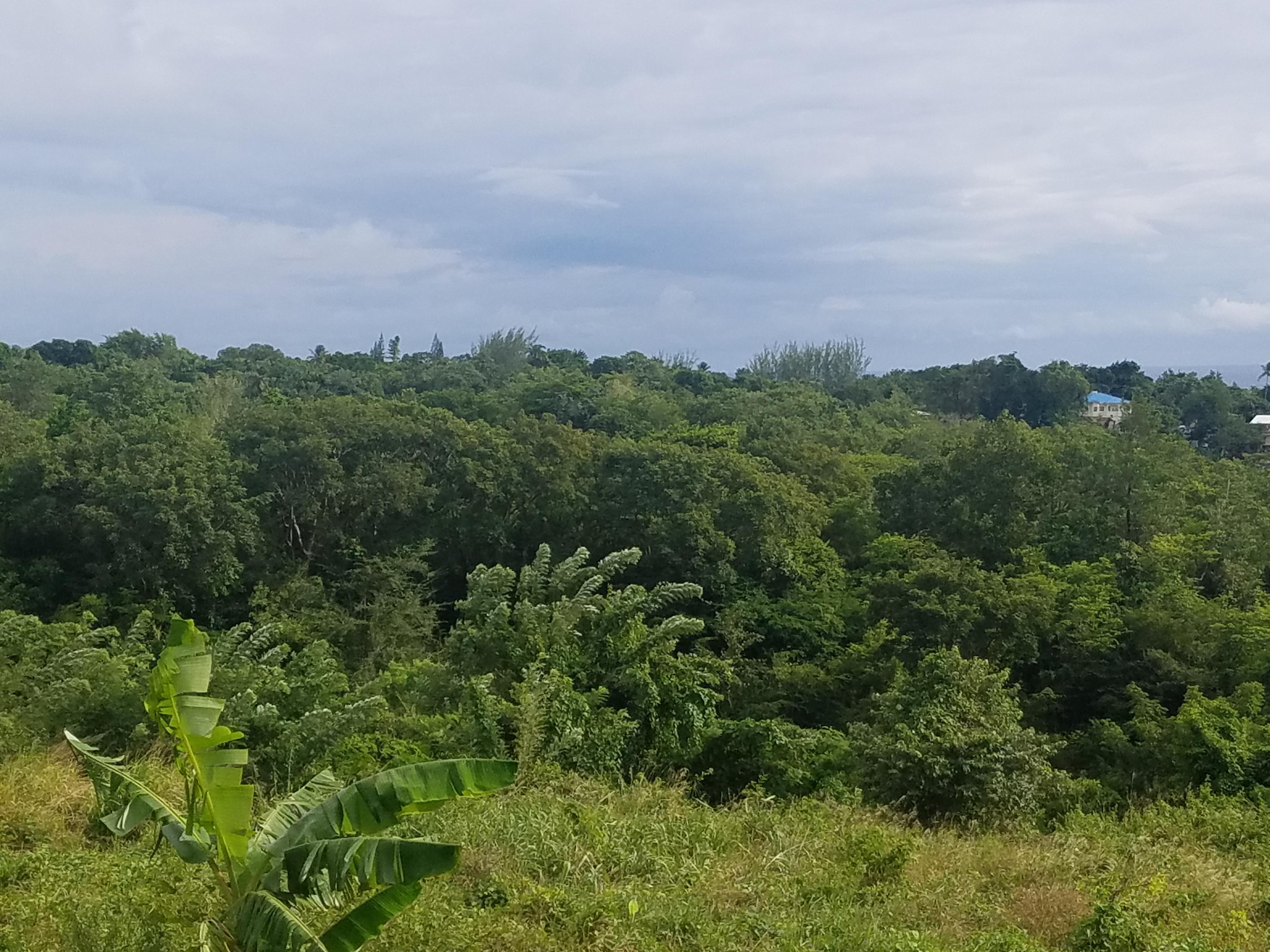 Choiseul St Lucia Property Deal