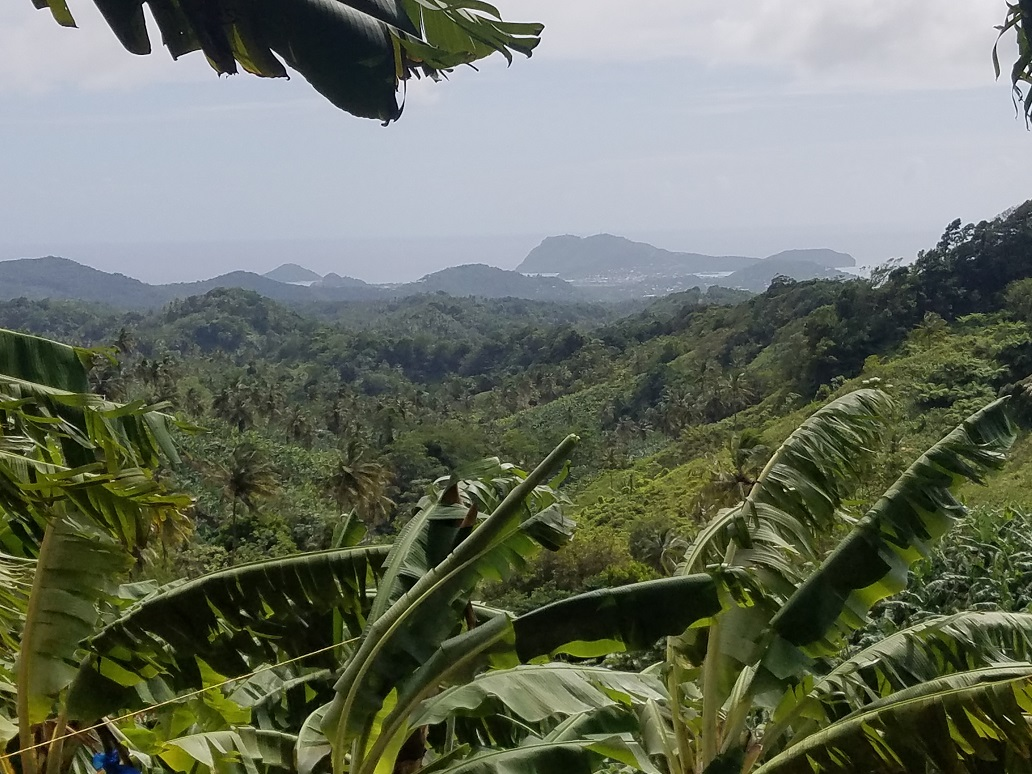 buying property in st lucia with farm