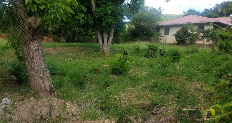 land for sale in vieux fort near horse racing track