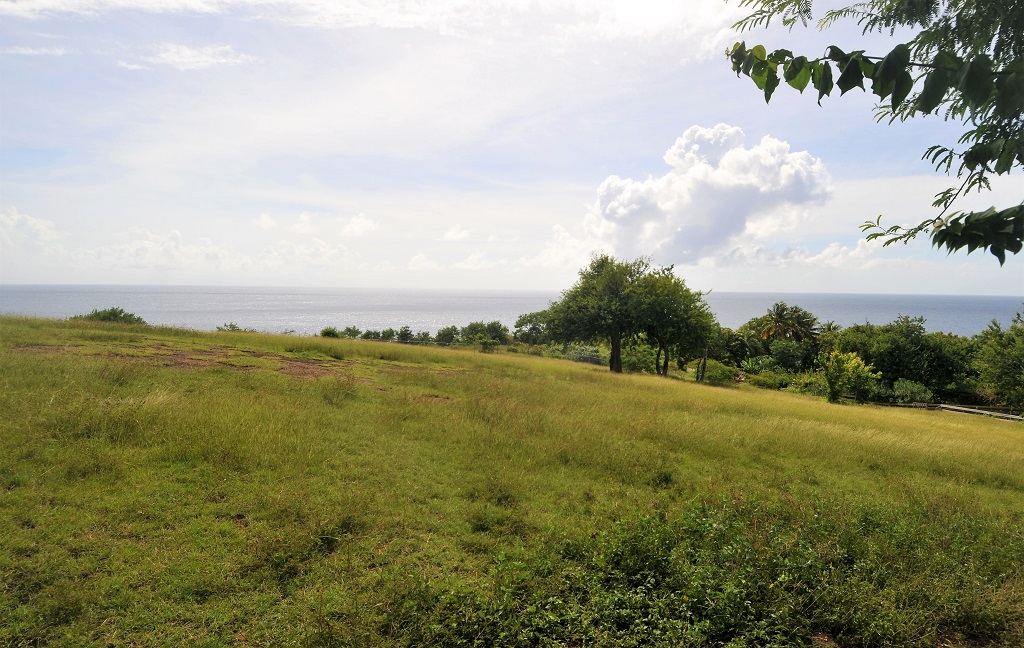 equine st lucia properties for sale st lucia