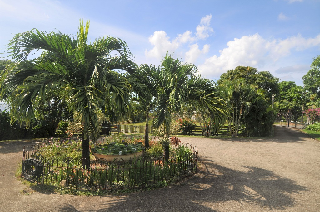 st lucia equine properties for sale st lucia