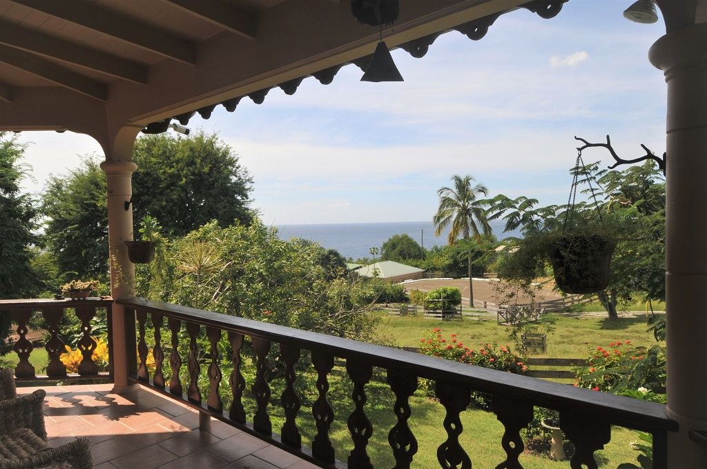 equine properties for sale st lucia and rent