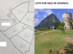 Choiseul Property