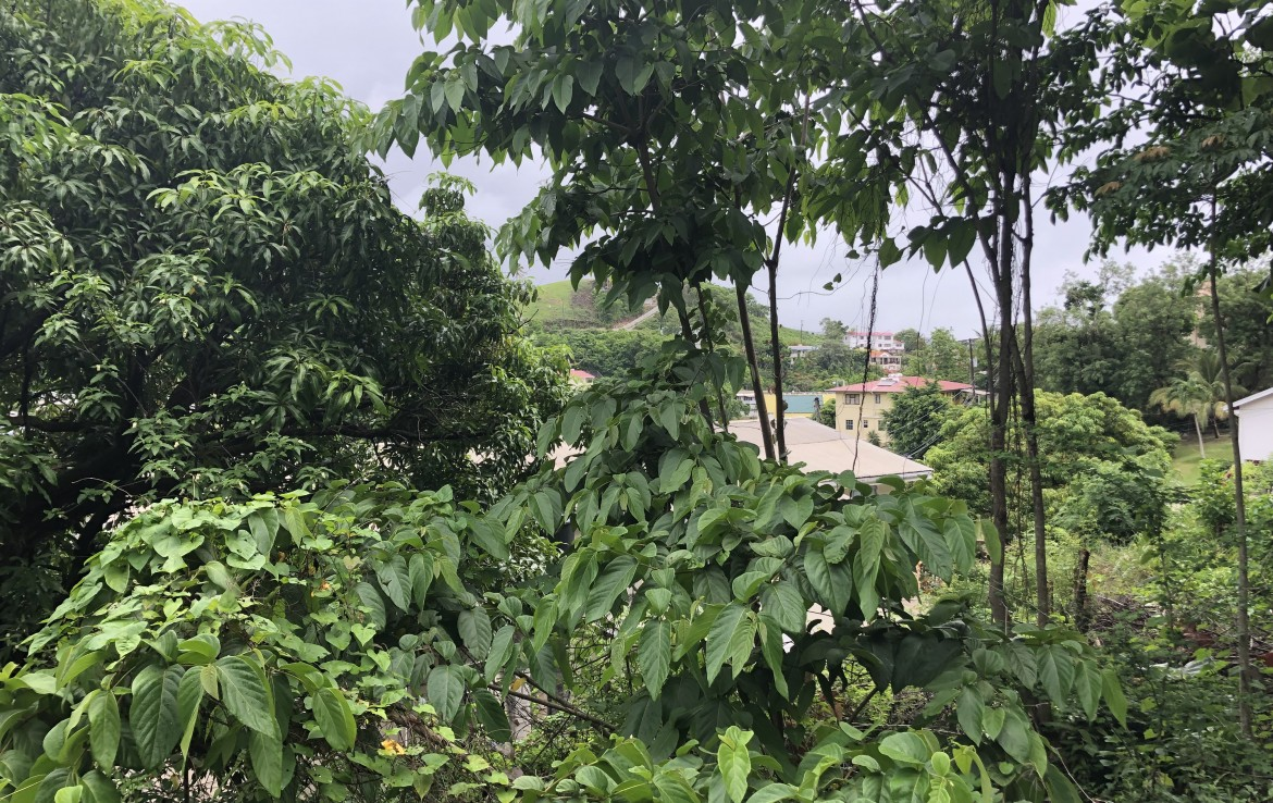 land for sale at sunny acres castries st lucia with views