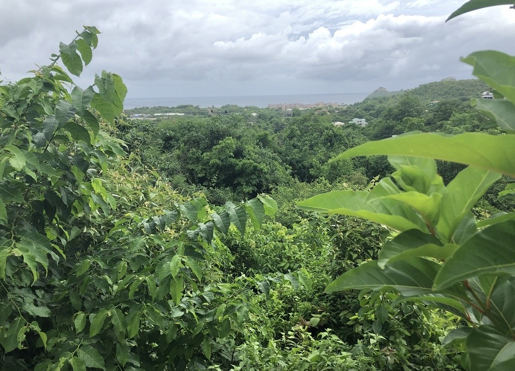 sothhills st lucia lot for sale