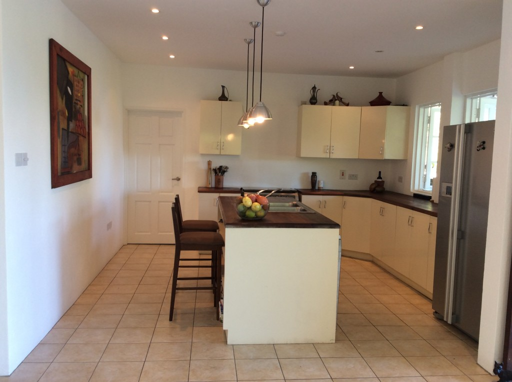 marigot st lucia villa for sale kitchen