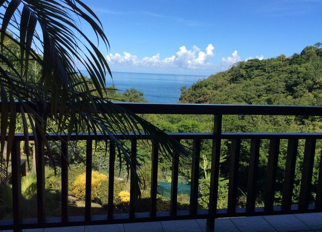 marigot st lucia villa for sale view