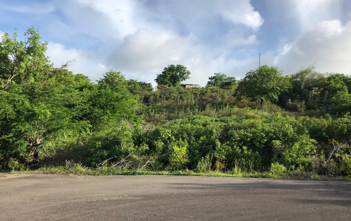 land for sale in cap estate south hills property