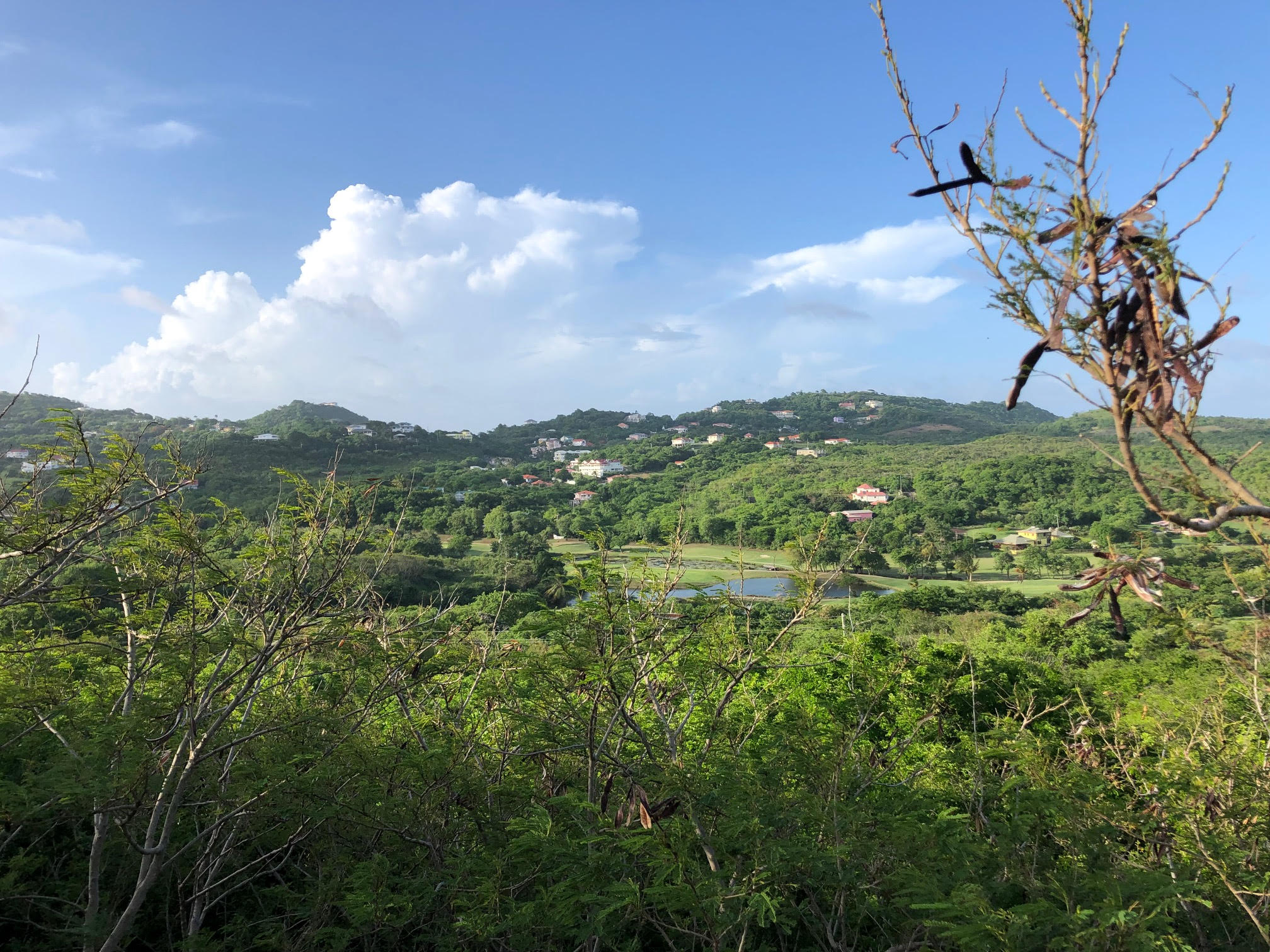 land for sale in cap estate south hills golf course