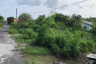 cedar heights lot for sale st lucia