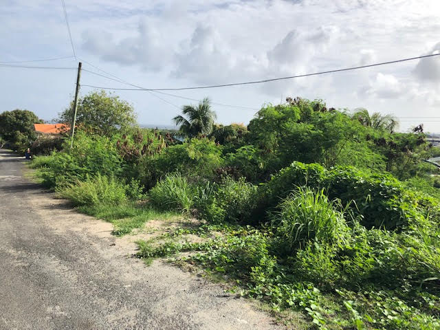 land for sale at cedar heights vieux fort couth road