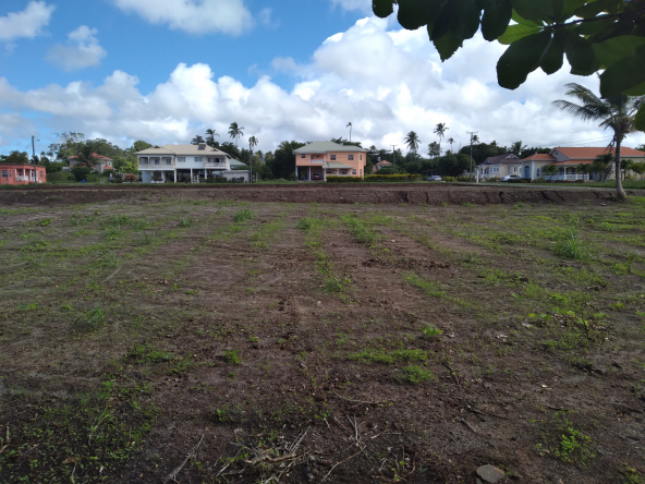 land for sale in st lucia balembouche
