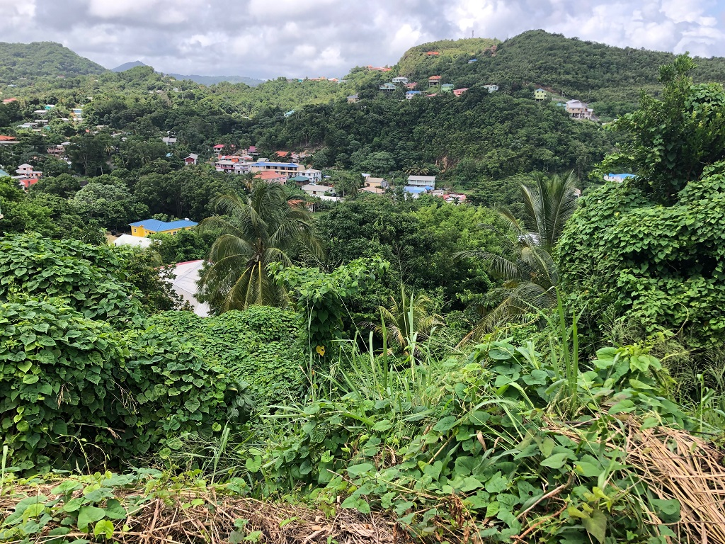 land for sale at corinth
