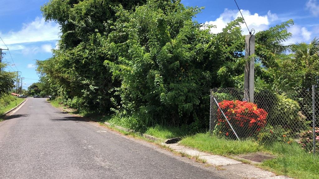 land for sale at hewanorra orchard