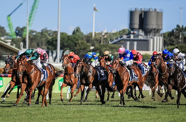 realty st. lucia real estate The Royal Saint Lucia Turf Club Inaugural Event - CECF 2019 horse race