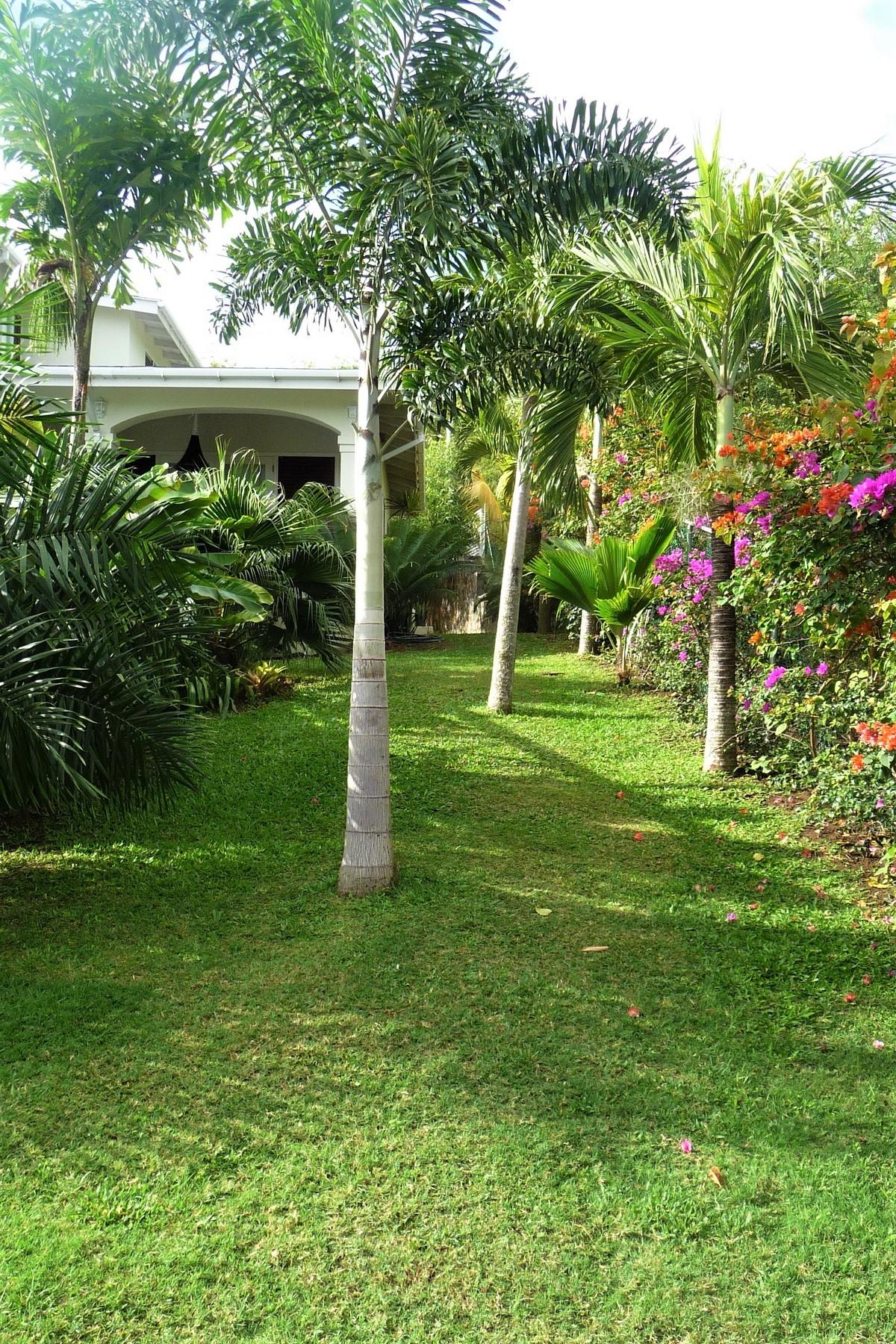 real estate st lucia caribbean