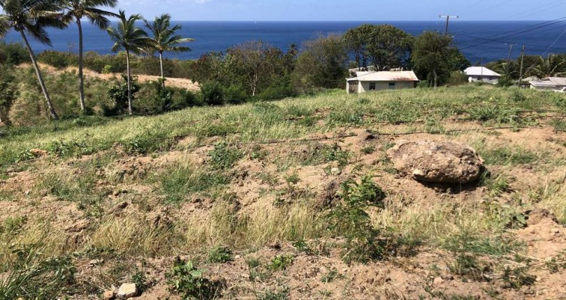30000 q ft land for sale choiseul