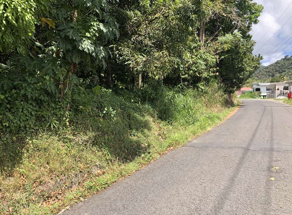 houses for sale in st lucia soufriere