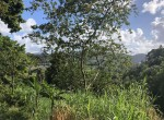 6,300 Sq. Ft. Land For Sale at Goodlands, Castries