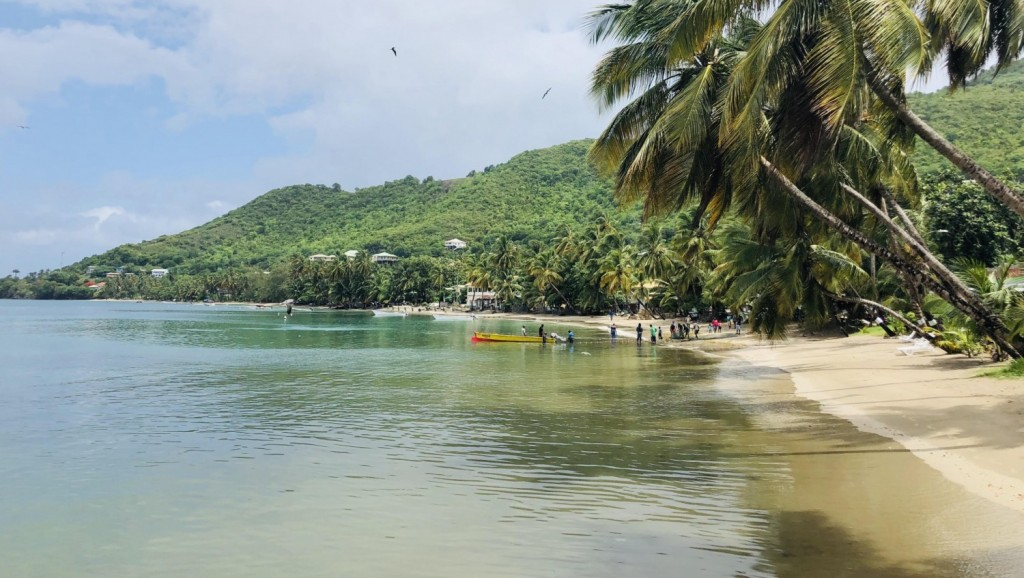 Moving to Saint Lucia