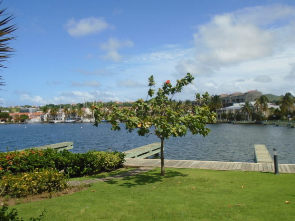 Invest St Lucia Land For Sale