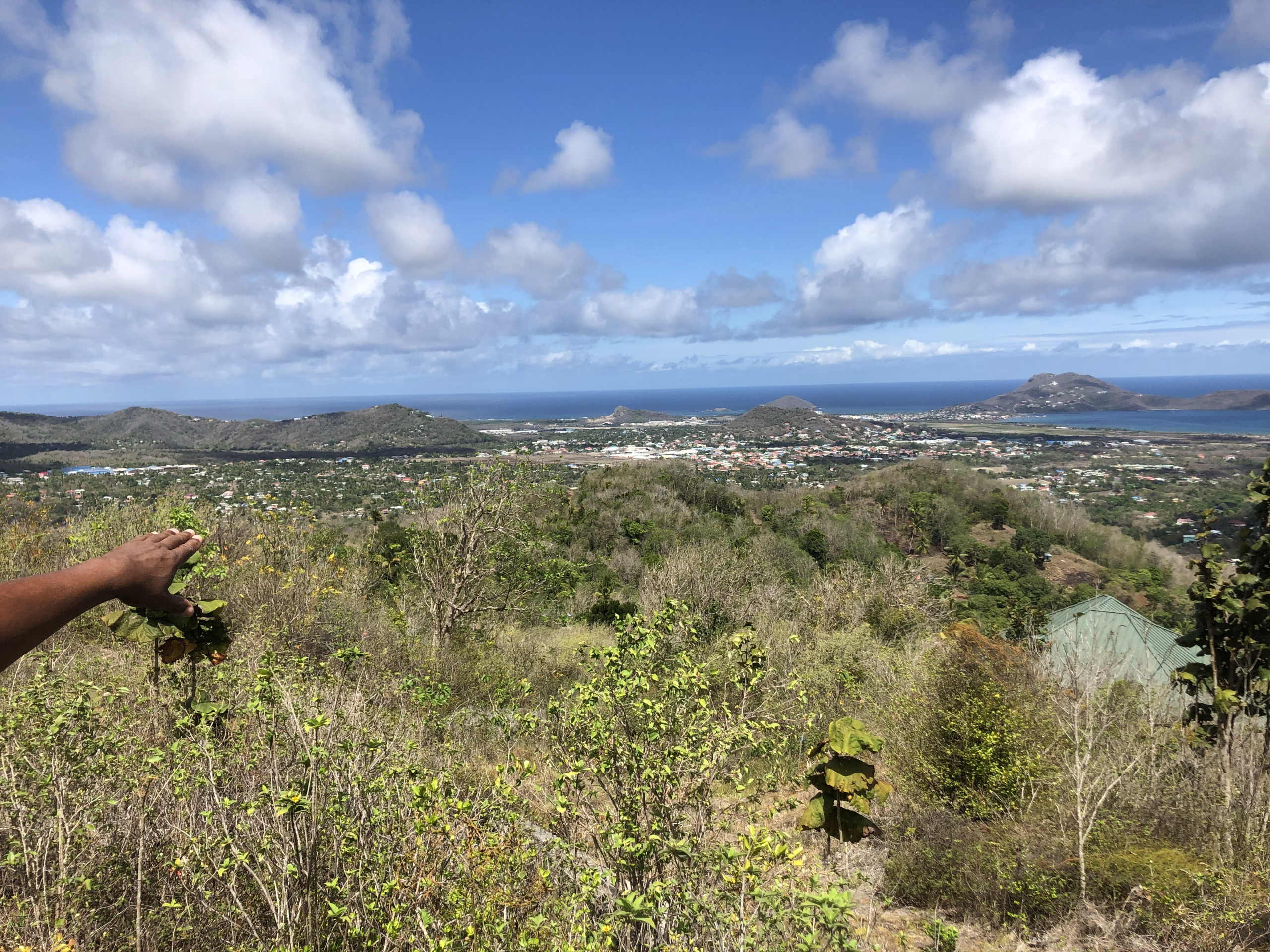 st lucia land for sale in laborie