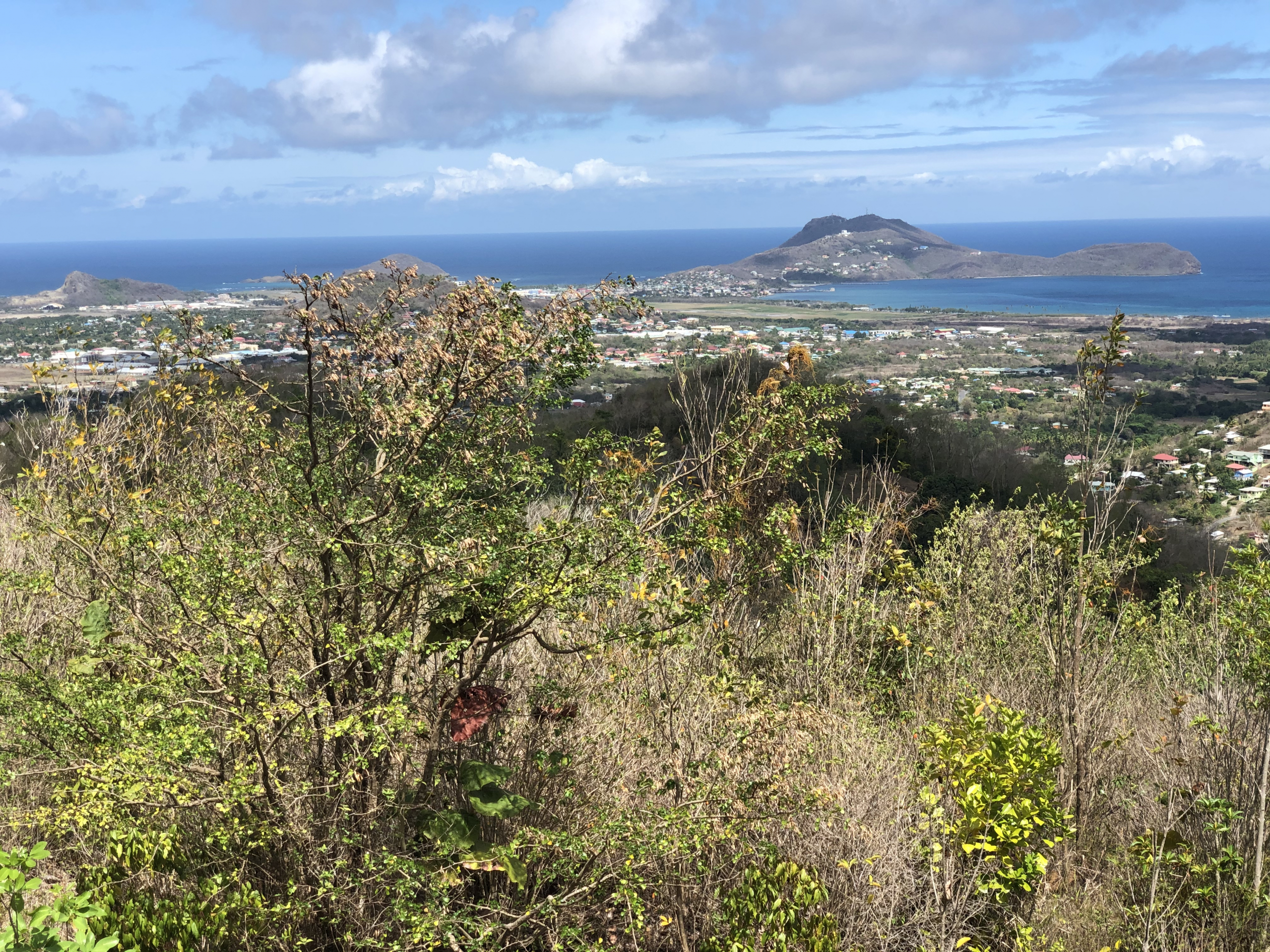 land for sale in laborie st lucia views