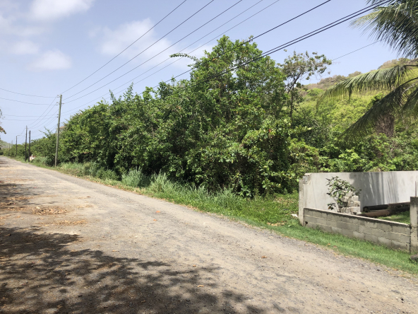 invest st lucia land for sale vieux fort vacant land