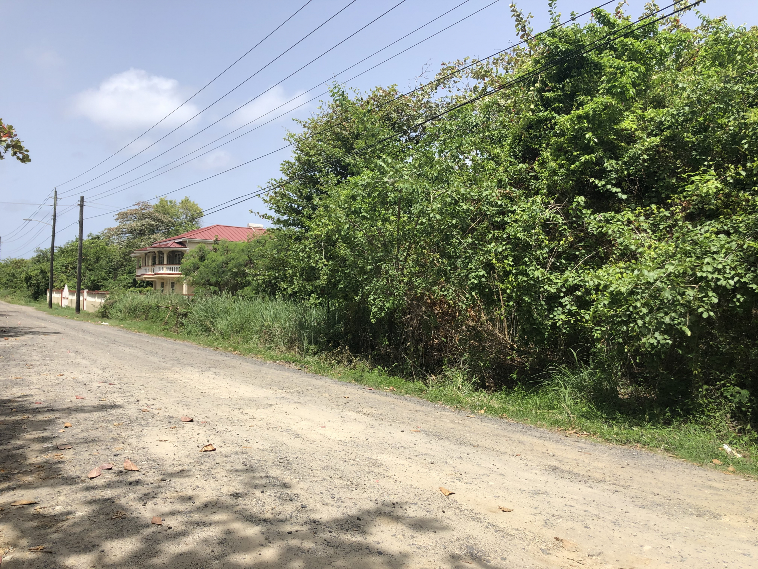 hotel for sale in vieux fort st lucia trees