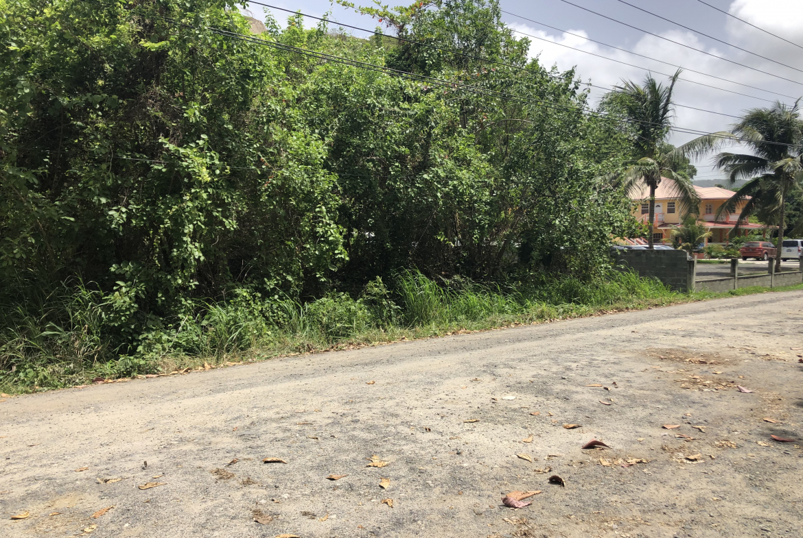 hotel for sale in vieux fort st lucia drive
