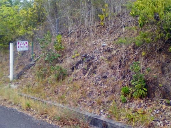 cedar heights vieux fort land for sale