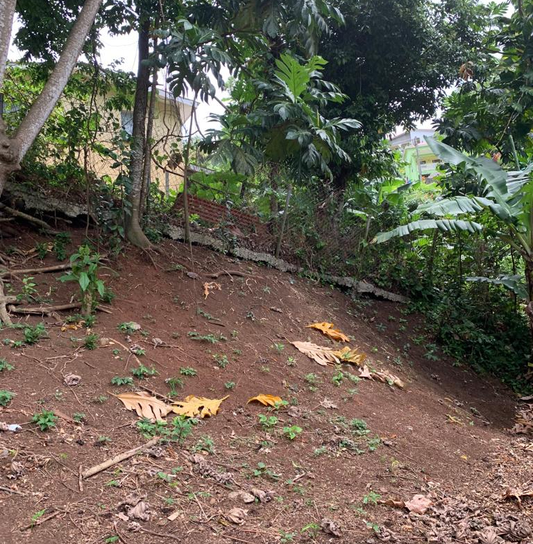 houses for sale in coubaril st lucia