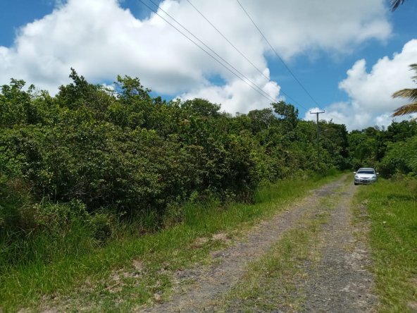Houses For Sale In St Lucia car