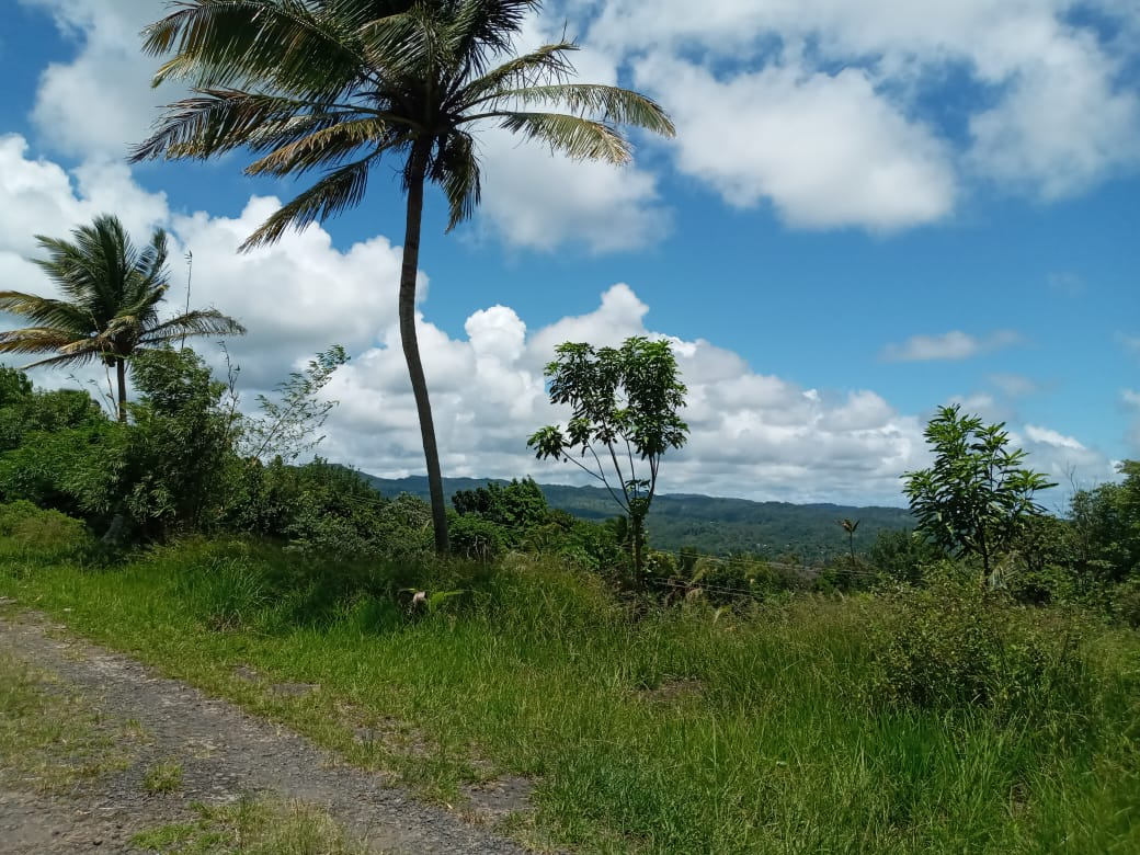 Houses For Sale In St Lucia view