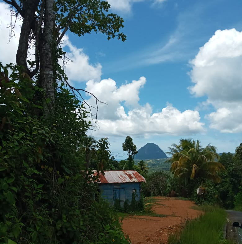 Houses For Sale In St Lucia laborie