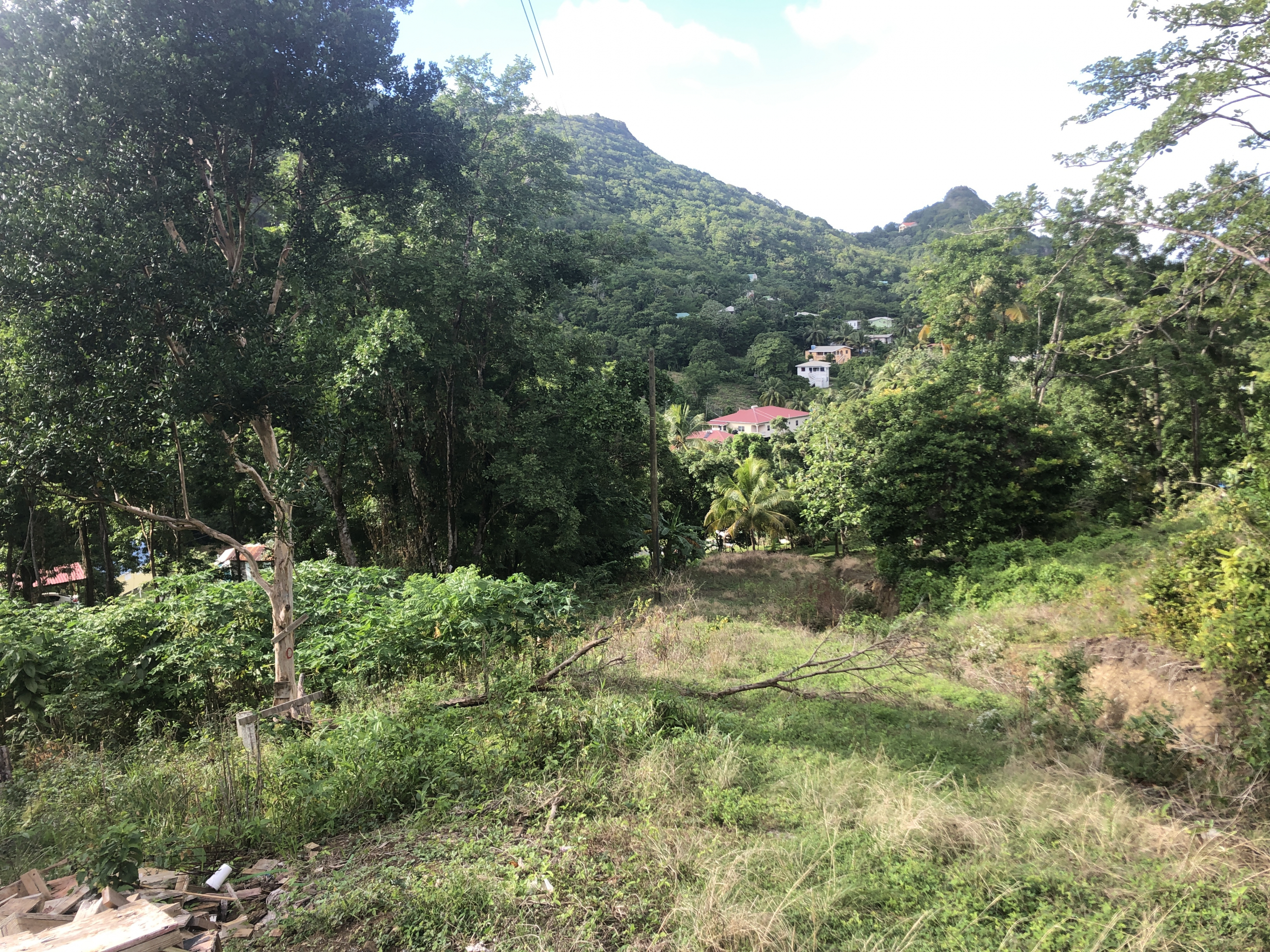 land for sale at monchy St Lucia Caribbean